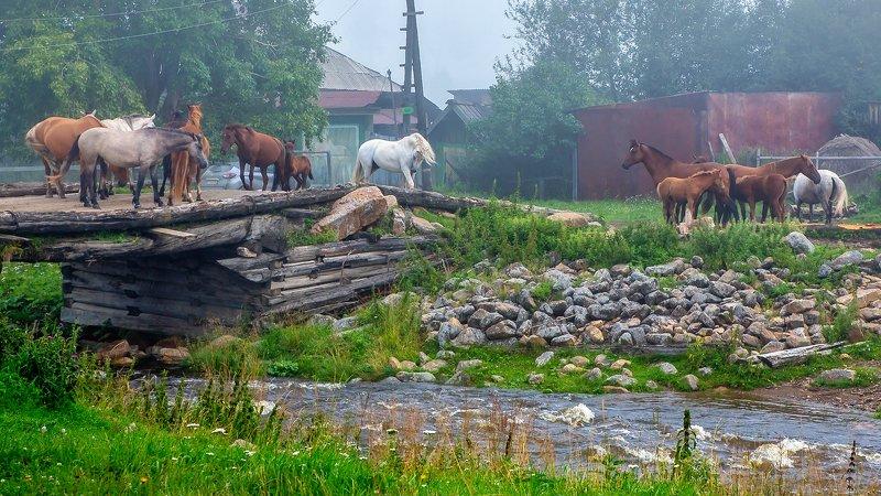 Деревенские историиphoto preview