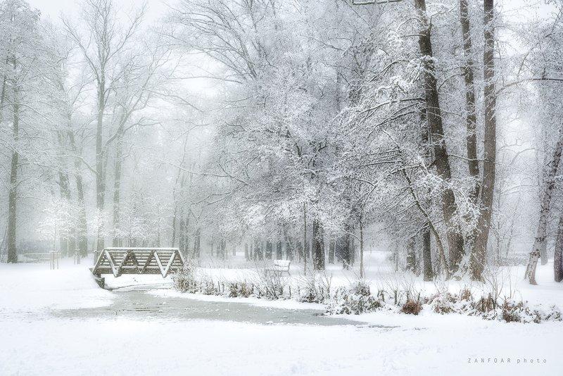 чехия Снег и туманphoto preview