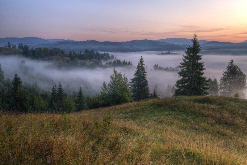 горы,карпаты,туман,утро,зори,заря Карпатское утроphoto preview