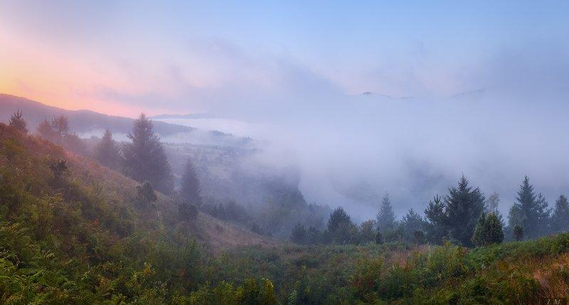утро, туман, горы, пейзаж, рассвет, Карпаты, панорама, Сколівські Бескиди, Рибник, река, Стрий, morning, fog, misty, Carpathians, mountains, panorama, river, Stryi, sunrise, summer, landscape рассвет в тумане ..photo preview