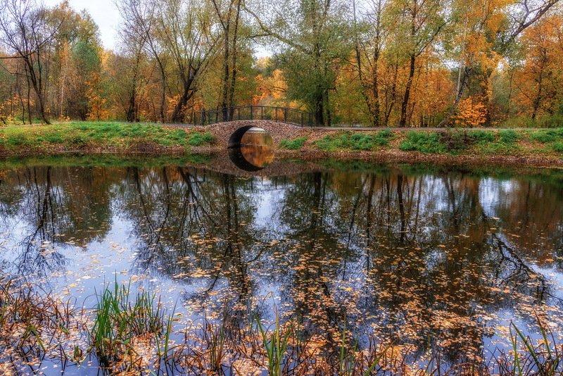 покровское-стрешнево, парк, осень, листья, деревья В старом паркеphoto preview