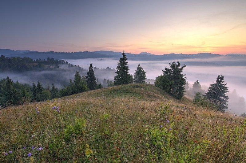 горы,карпаты,туман,утро,зори,заря Карпатыphoto preview