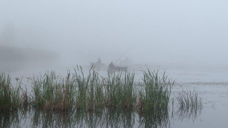 Рыбное местоphoto preview