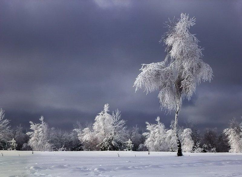 Снегурочкаphoto preview