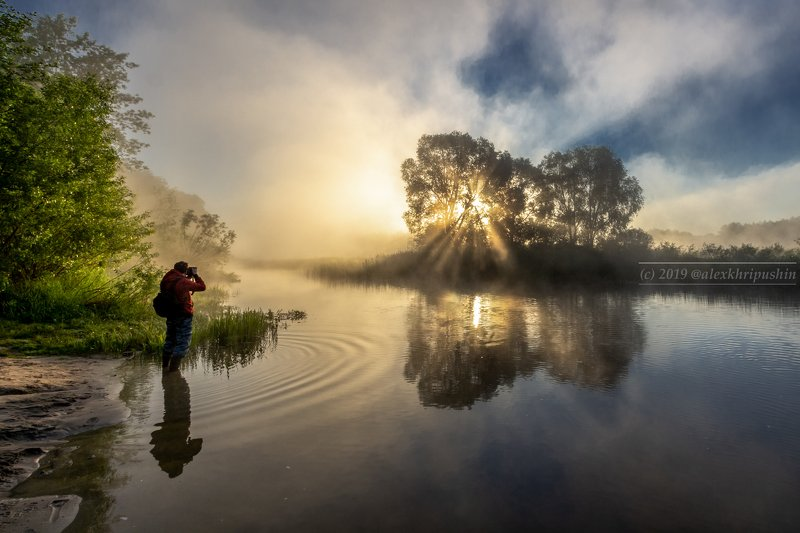 morning river water reflections fog mist landscape spring tree sunlight The morning of photographerphoto preview