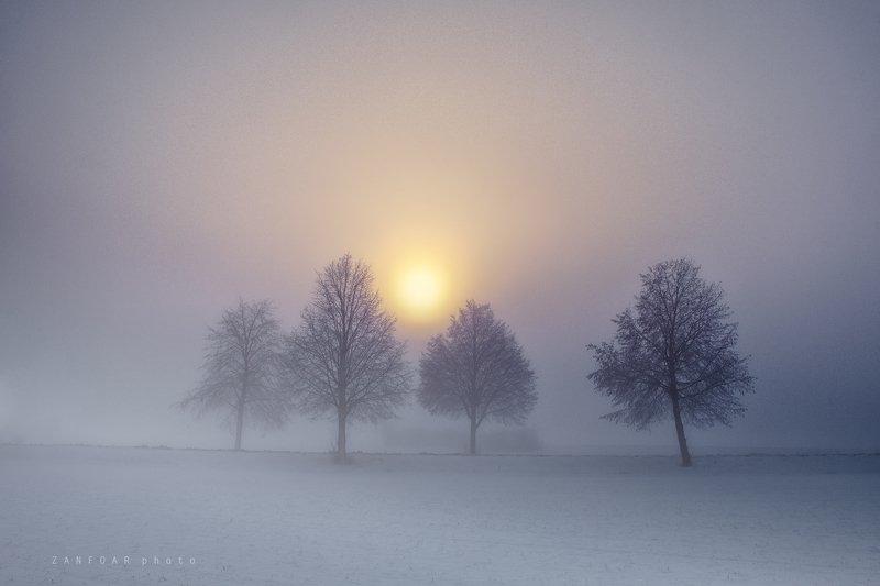 мороз, утро,zanfoar,cech republic,bohemia,moravia,nikon d750,чехия морозное утроphoto preview