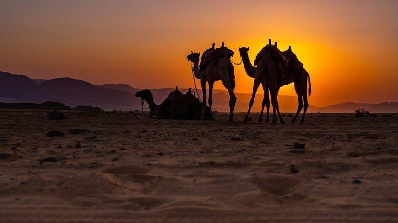 Wschód słońca na pustyni Wadi Rumphoto preview