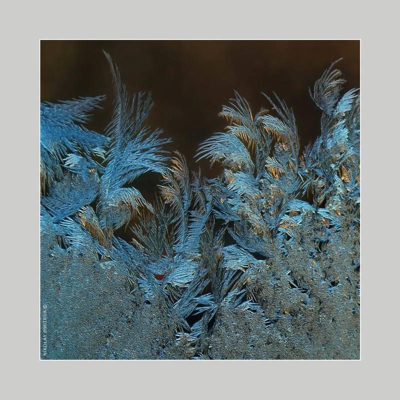 макро графика мороза. 14.30photo preview
