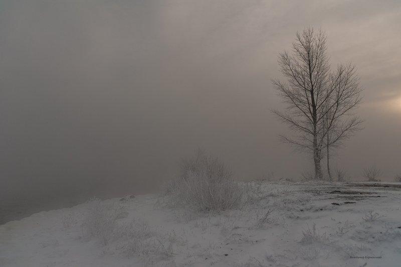 Зима в январе....photo preview