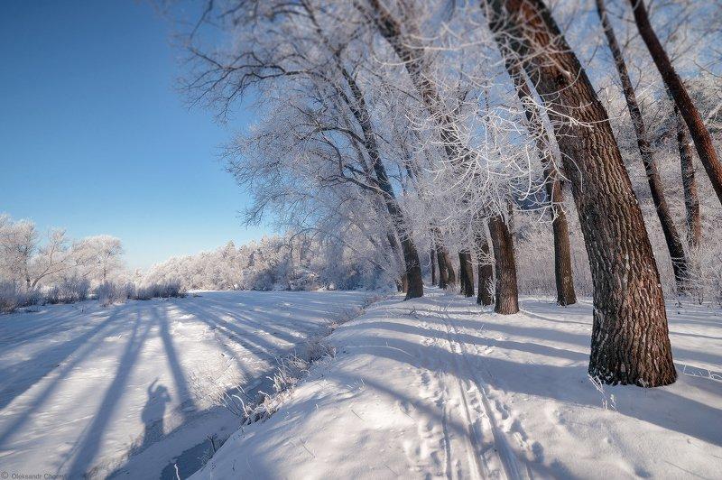украина, коростышев, природа, река, тетерев, зима, снег, мороз, тень, силуэт, полесье, тишина, небо, уединение, гармония, счастье, жизнь, воздух, чистый, вдохновение, волшебство, деревья, просторы, любовь, фотограф, чорный, Сходятся, расходятся, сплетаются тени...photo preview