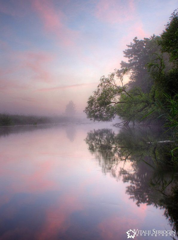 речка, утро, туман, дерево Родная рекаphoto preview