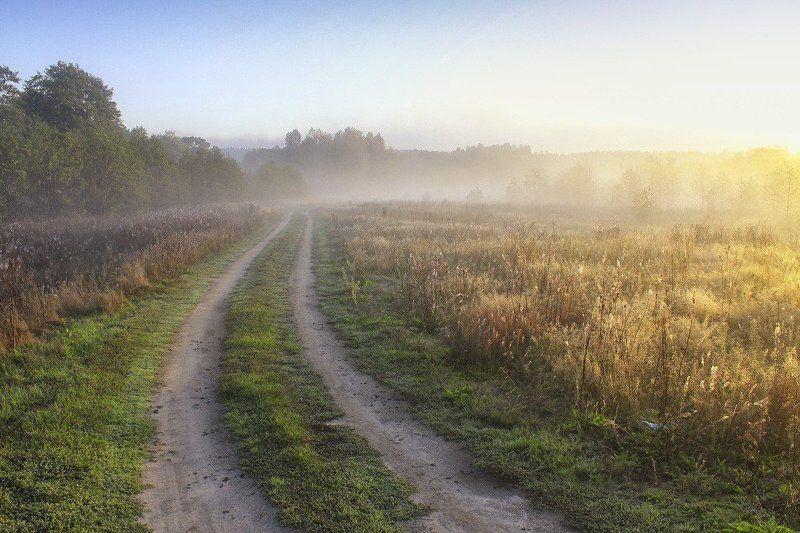 меленки, утро, лес, поле, река, унжа, цветы, туман, солнце, вода, дорога Туманным утром...photo preview
