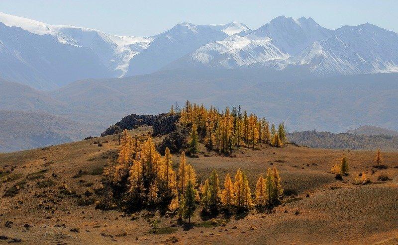 алтай, северо-чуйский хребет, вечер, осень. Осенний хоровод.photo preview