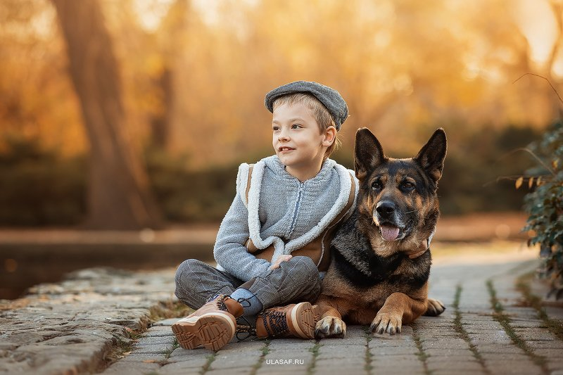 портрет, art, portrait, осень, sunset, закат, autumn, дети, мальчик, boy, people, eyes, face, собака, овчарка, dog, волшебство, magik, happy, nikon, 105mm, kid, children, beautiful, love ***photo preview
