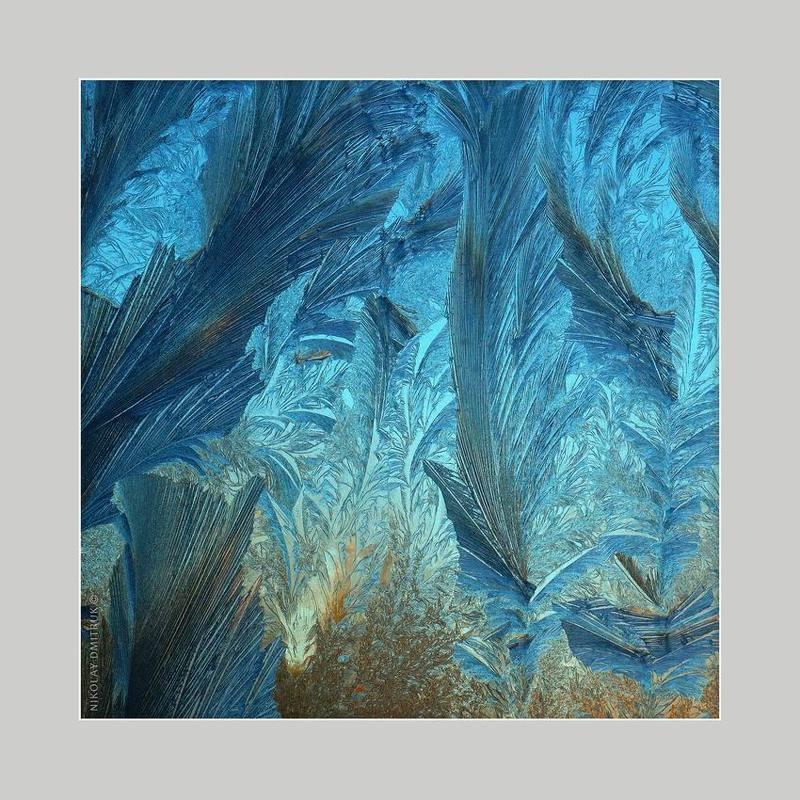 макро перья. графика мороза. 14.45photo preview