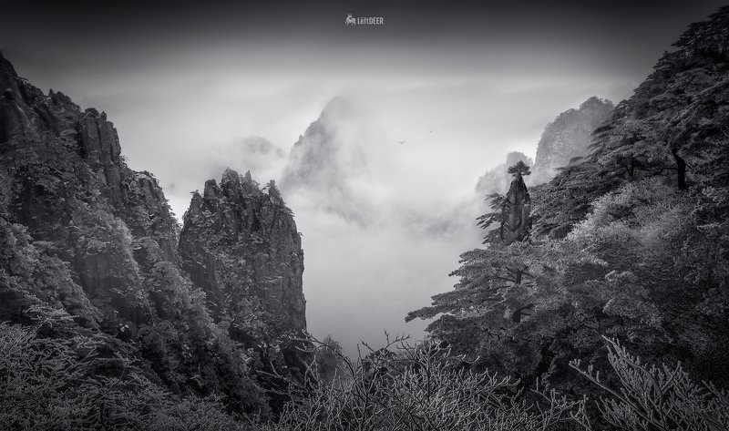 landscapes,Black & White,light shadow,China,Wenzhou,mountain,Mount huangshan Mount Huangshanphoto preview
