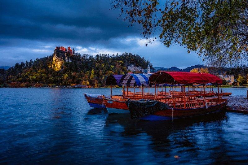 словения, озеро, блед, bled, slovenia, lake, castle Пасмурное утро на озере фото превью