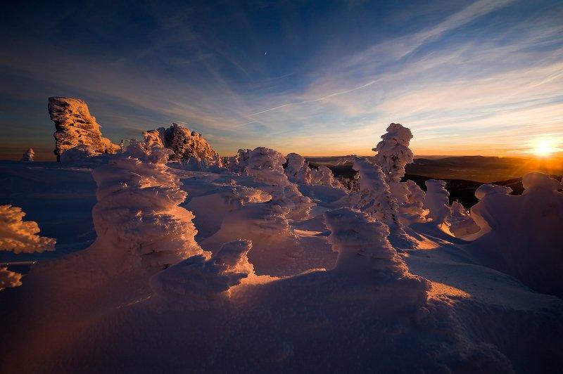 рождество, елки, елочки, снег, иней, мороз, зима, пихты, гора зелёная, шерегеш, горная шория, сибирь Лучшие рождественские «ёлочки» из Шерегешаphoto preview