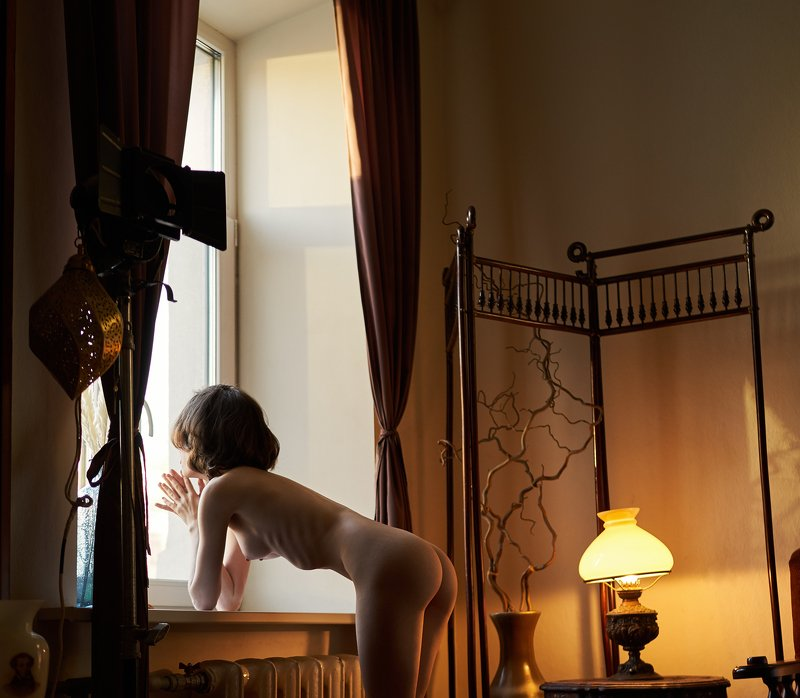 girl, nude, naked, at home, natural light, skinny, lamp, antique, window, ribs, light, pushkin, Saint-Petersburgphoto preview