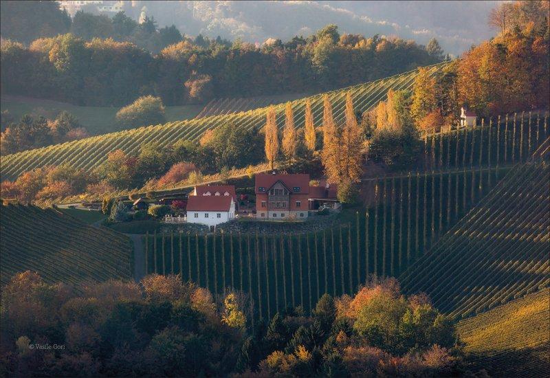 штирия,гамлитц,свет,австрия,gamlitz- sernau,landscape,панорама,осень КРАСКИ ОСЕНИphoto preview