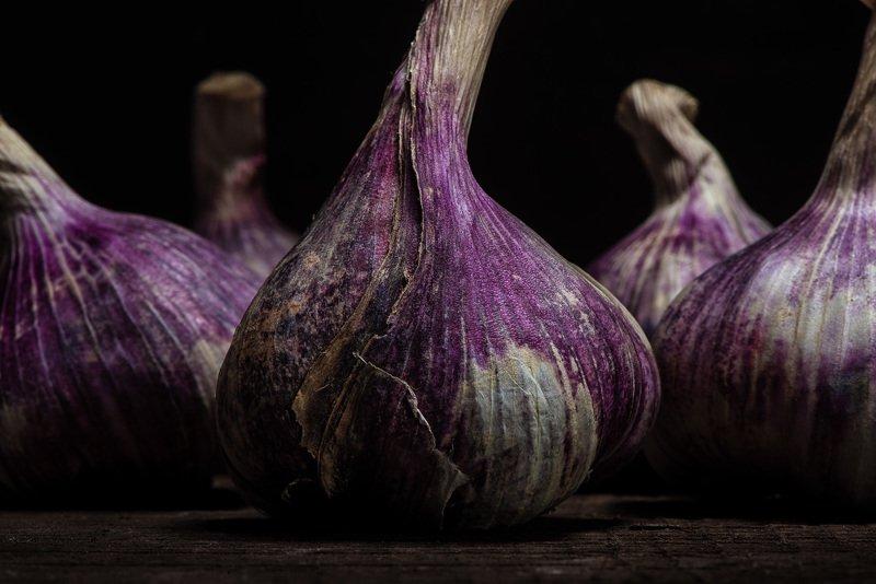 purple; garlic; ail; violet; gastronomie, food, vegetable, legume, color, dark, old, vieux, vintage; PURPLE GARLICphoto preview