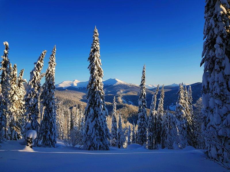 кузбасс, кузнецкий алатау, зима, мороз, сугробы, белый, лес, Прогулка в Рождество. Кузбассphoto preview