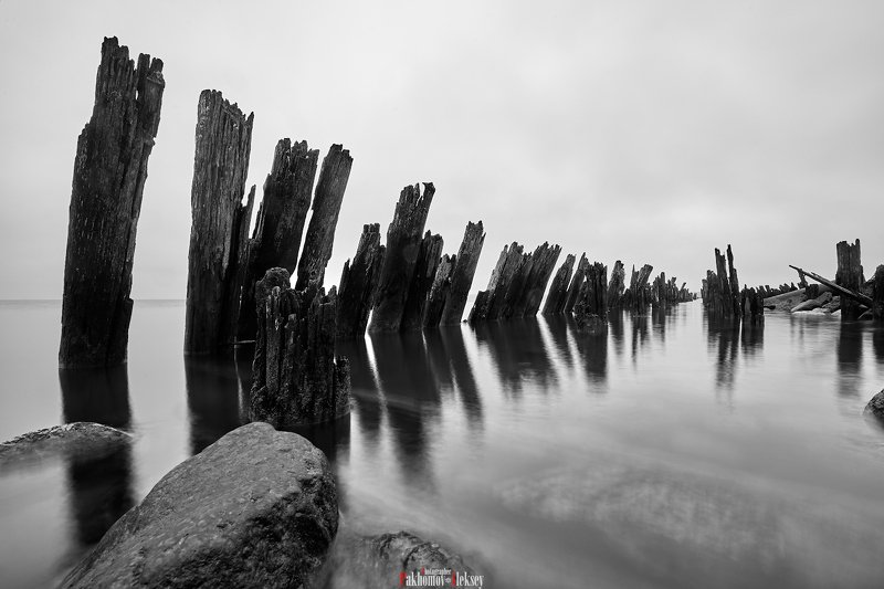 monochrome, black, white, bw, b&w, blackwhite, black&white, landscape, mystery, three, russia,  чб, монохром, пейзаж, деревья, природа, nature, outdoor The remains of a wooden pierphoto preview