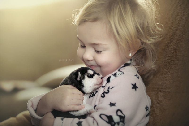 дети, ребенок, хаски Beginning of a beautiful friendshipphoto preview