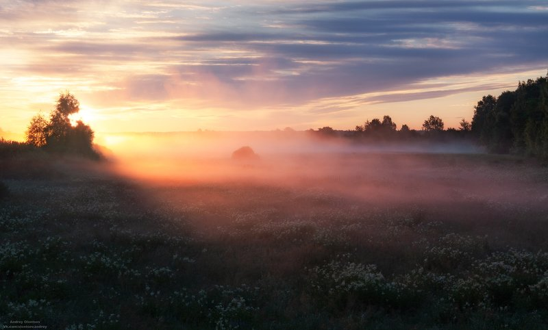 солнце, россия, рассвет, природа, подмосковье, погода, пейзажи, пейзаж, отражение, наукоград, красота, дубна, вода, весна, weather, water, spring, russia, reflection, naukograd, nature, moscow, landscape, dawn, canon, dubna, beauty А над полем туман.photo preview