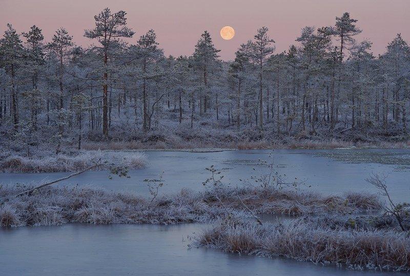 Лунный закатphoto preview
