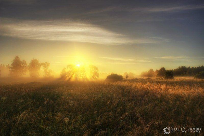 туман, утро, солнце, лучи, поле Мягкое теплоphoto preview