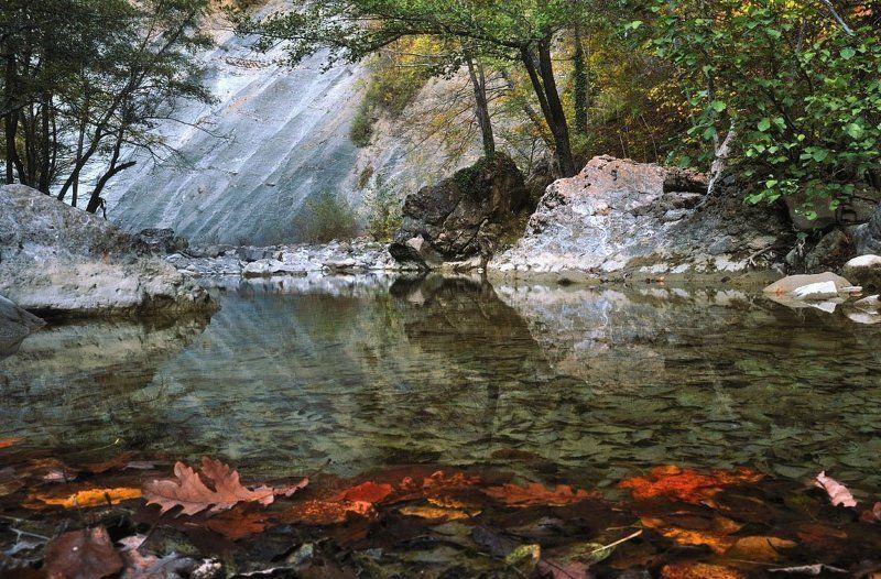 осень, река, листья Урочище Поднавислаphoto preview