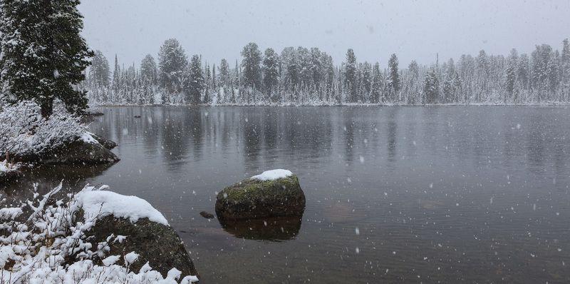снег снег снегphoto preview