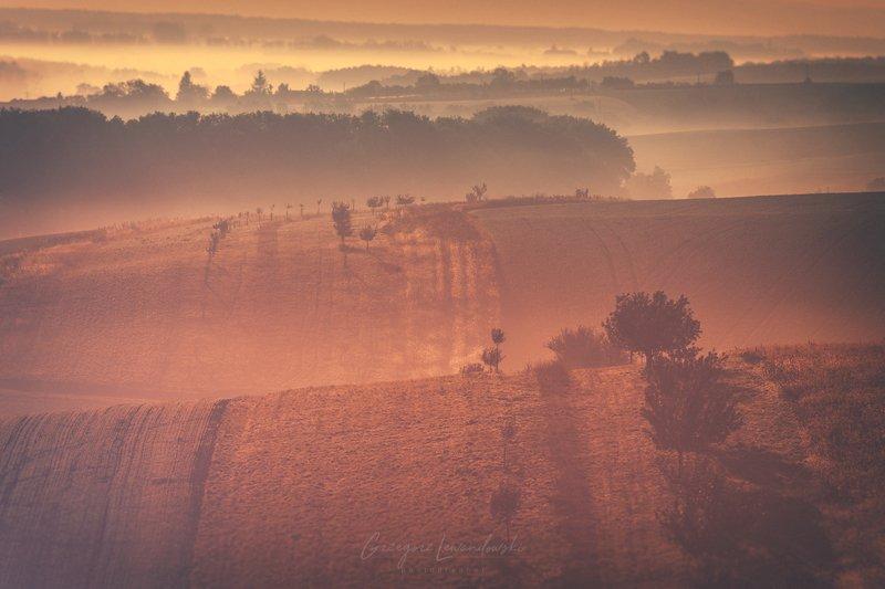 Land Moravia фото превью