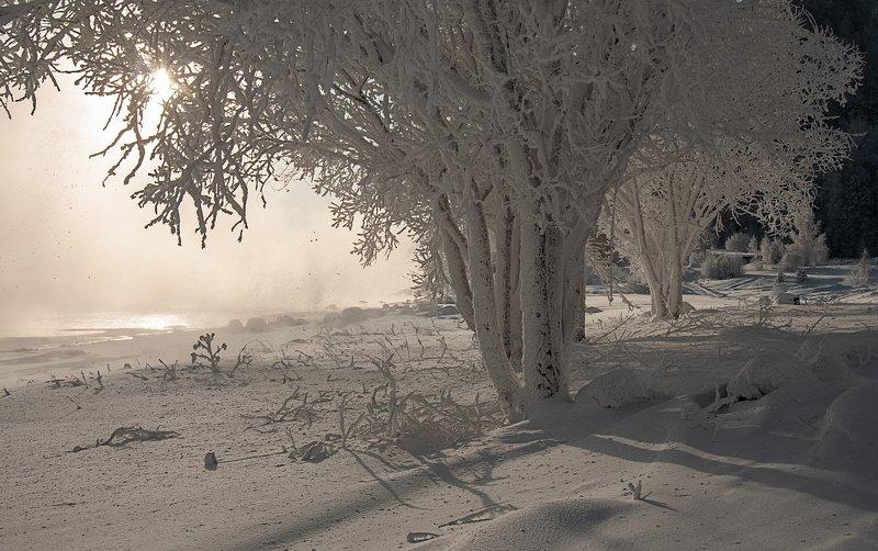 енисей, мороз, изморозь. В морозный день.photo preview
