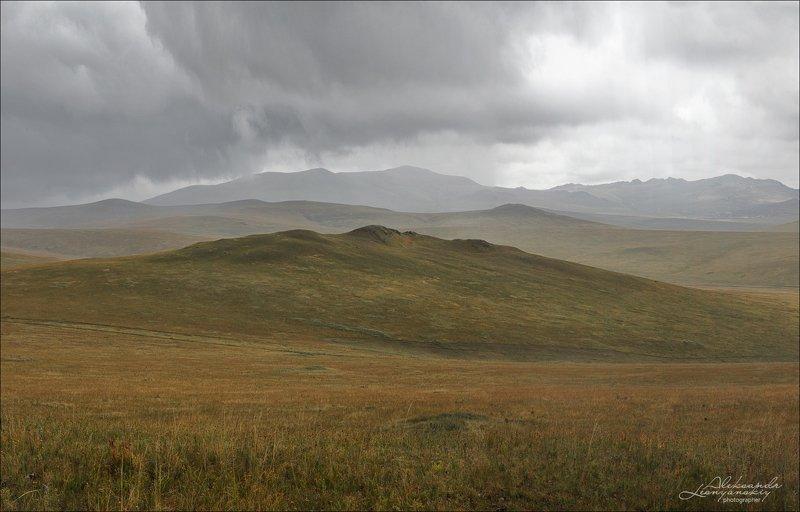 забайкальский край Даурские степиphoto preview