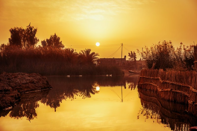 Colors,Marshes,Iraq,trees,Water A quiet momentphoto preview