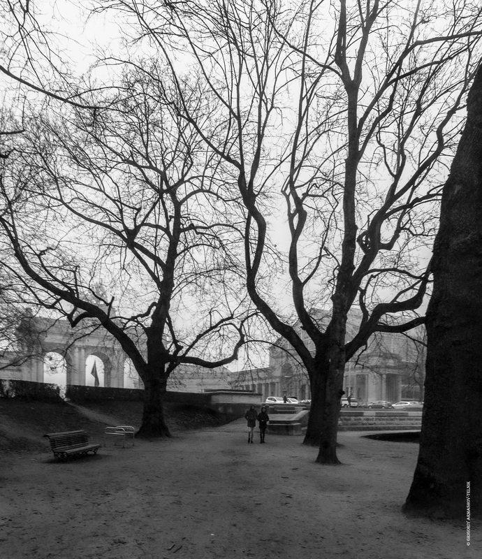 blackandwhite, monochrom, streetphotography, brussels, park, trees, walk Брюссель. Парк Сэнкантёнэрphoto preview
