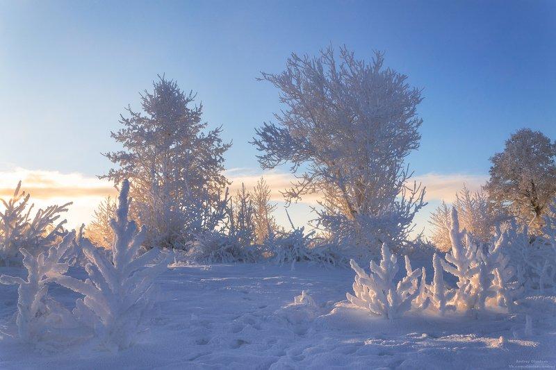 солнце, россия, рассвет, природа, подмосковье, погода, пейзажи, пейзаж, отражение, наукоград, красота, дубна, вода, весна, weather, water, spring, russia, reflection, naukograd, nature, moscow, landscape, dawn, canon, dubna, beauty Как бы не было зимы.photo preview
