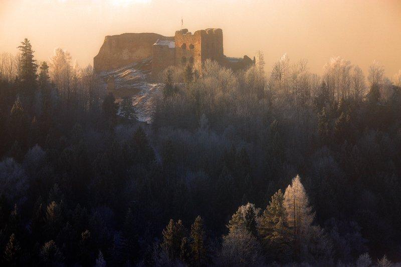 castle, morning, sunrise, forest, tree, light, mist, poland, pieniny, ruins, winter, Czorsztyn castlephoto preview