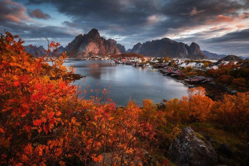 Autumn in Lofotenphoto preview