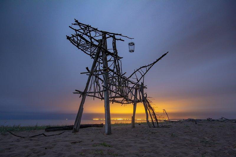 ночное фото, арт-объект, архангельская область, Белое море, Тайбола Пегасphoto preview