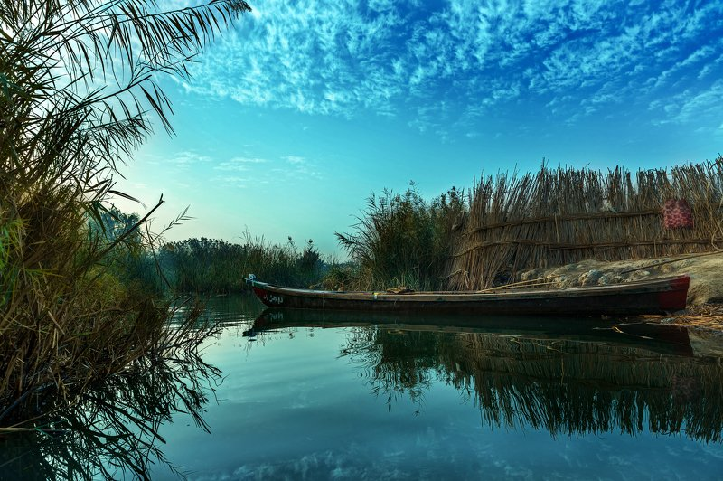 Colors,Marshes,Iraq,trees,Water Dawn boatphoto preview