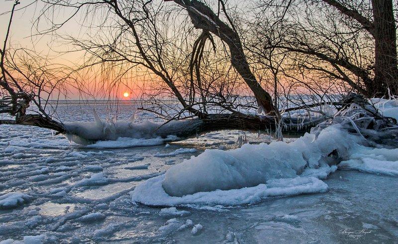 утро, рассвет, зима, мороз, лёд, река Ледниковый период!photo preview