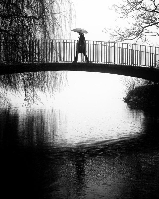 people, bridge, umbrella, rain, water, alster, lake, hamburg, germany it\'s a rainy dayphoto preview