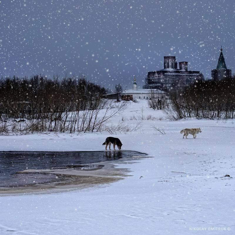 пейзаж Капитан Белый Снег.photo preview