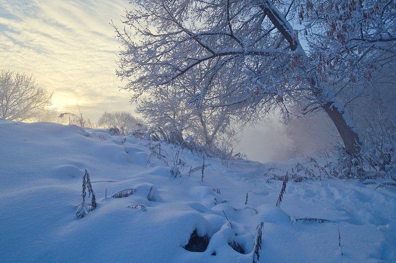 пейзаж, природа, зима, снег, мороз, тула, косая гора Снега Косой Горыphoto preview