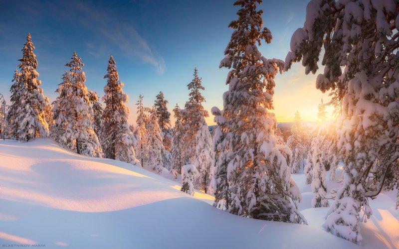 Финляндия, Лапландия, Снег, сугробы, закат, лес, дерево, мороз, солнце, луч, путешествия, travel, explore, forest, snow, winter, day, sunset, travel Да будет Снег!photo preview
