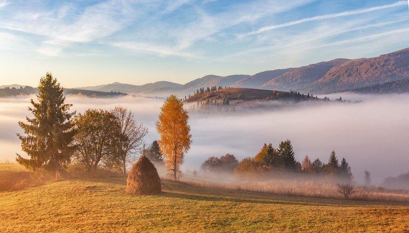 закарпатье, осень, рассвет, горы ...photo preview