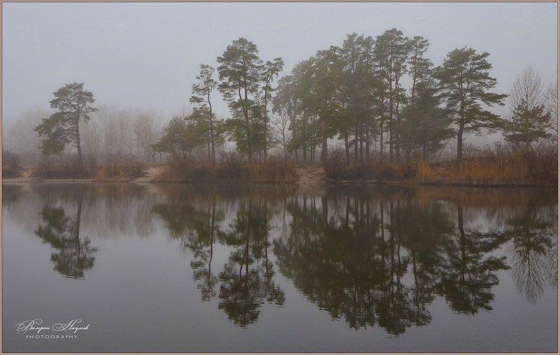зима, туман, отражения Зимы всё ждёт и ждёт природа...photo preview
